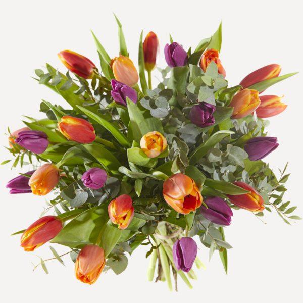 Tulpen Boeket bestellen Utrecht woerden