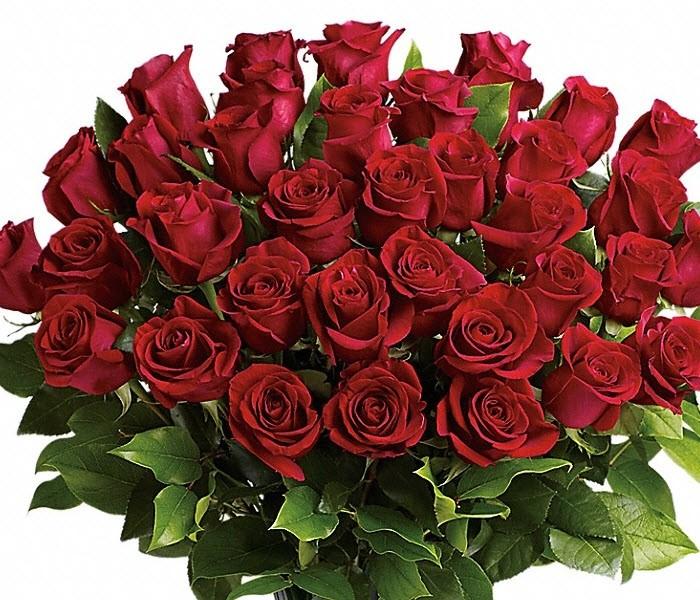 valentijns boeket rode rozen woerden bloemist