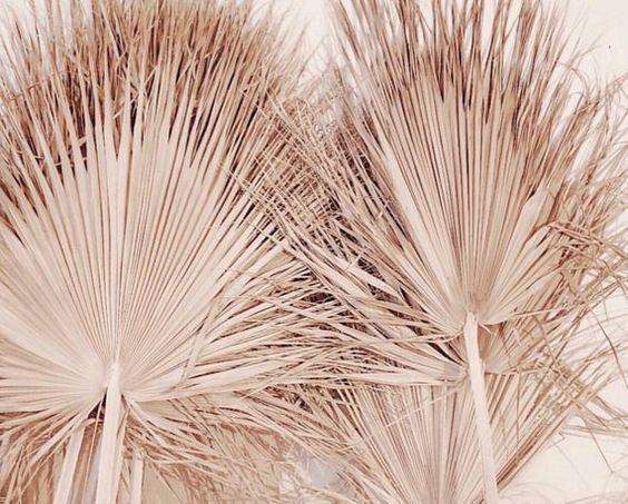 Goud palmblad bestellen kerst