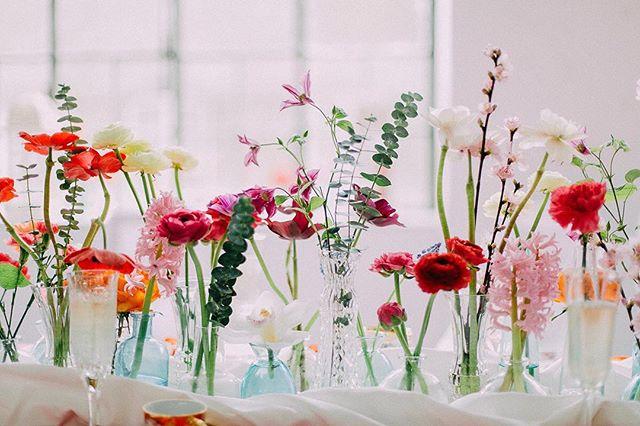 Verzorgingstips voor bloemen