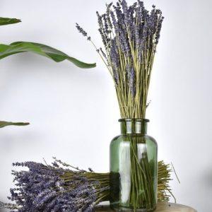 Gedroogde Lavendel per bos