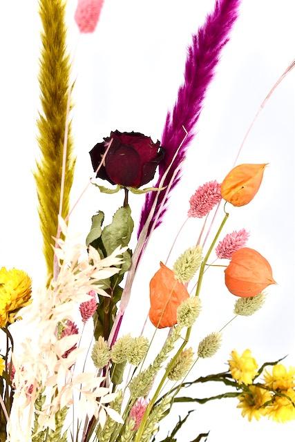 droogbloemen boeket met gratis bezorgen