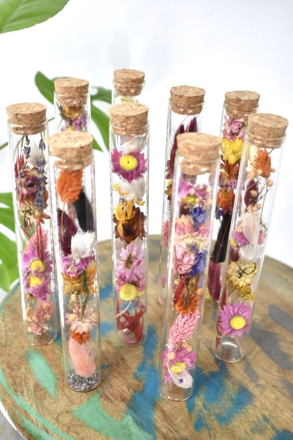 cilinder set droogbloemen