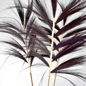Gras Pluimen Set 120cm Zwart