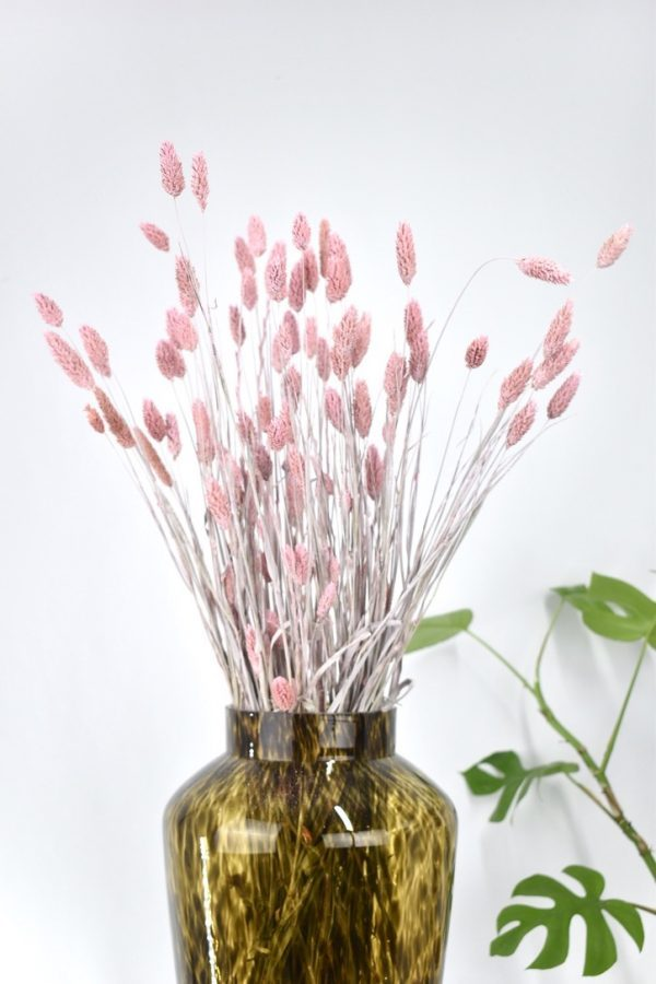 roze losse droogbloemen