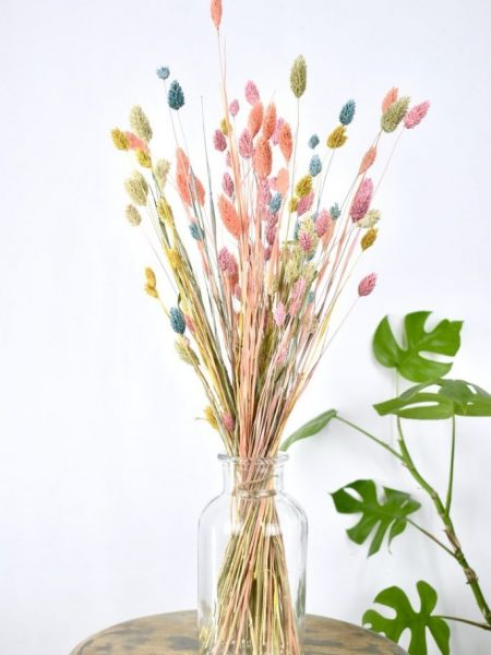 losse droogbloemen kleur mix bestellen