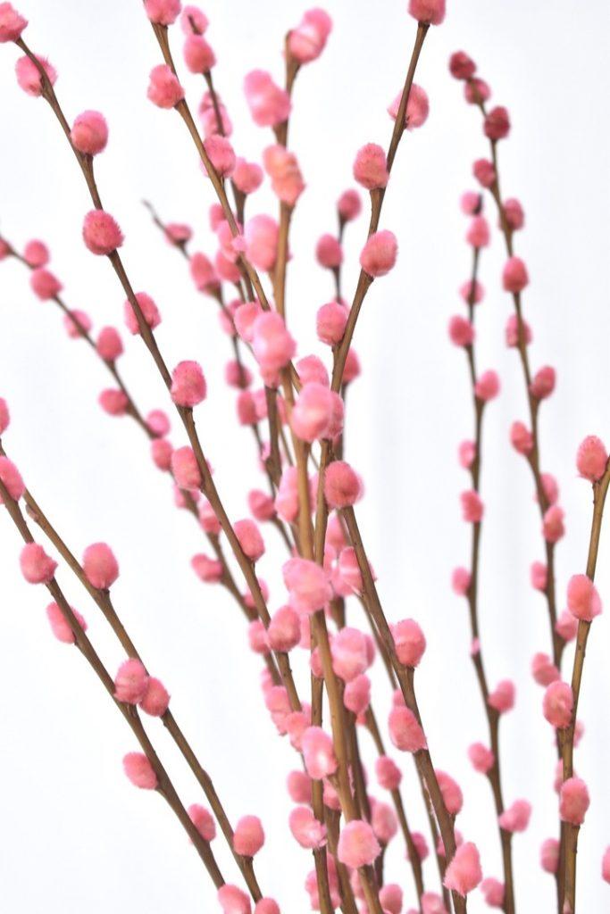 losse gekleurde droogbloemen