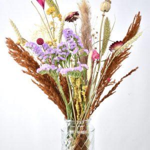 Droogbloemen bonte mix
