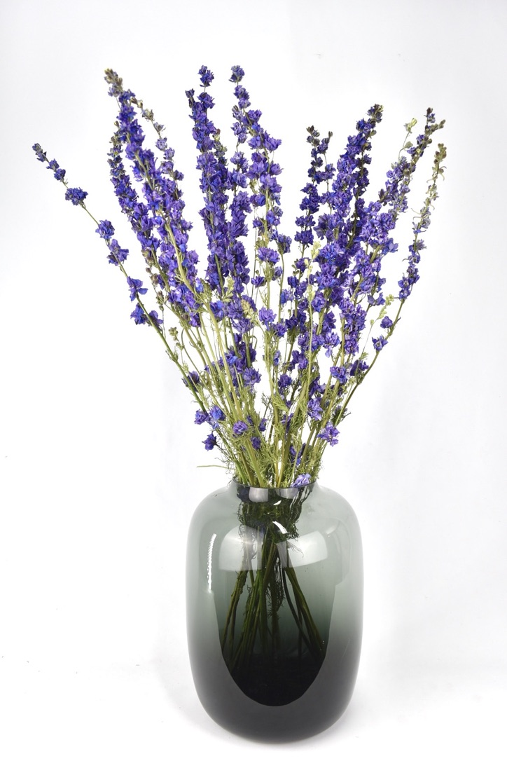 gedroogde bloemen ridderspoor