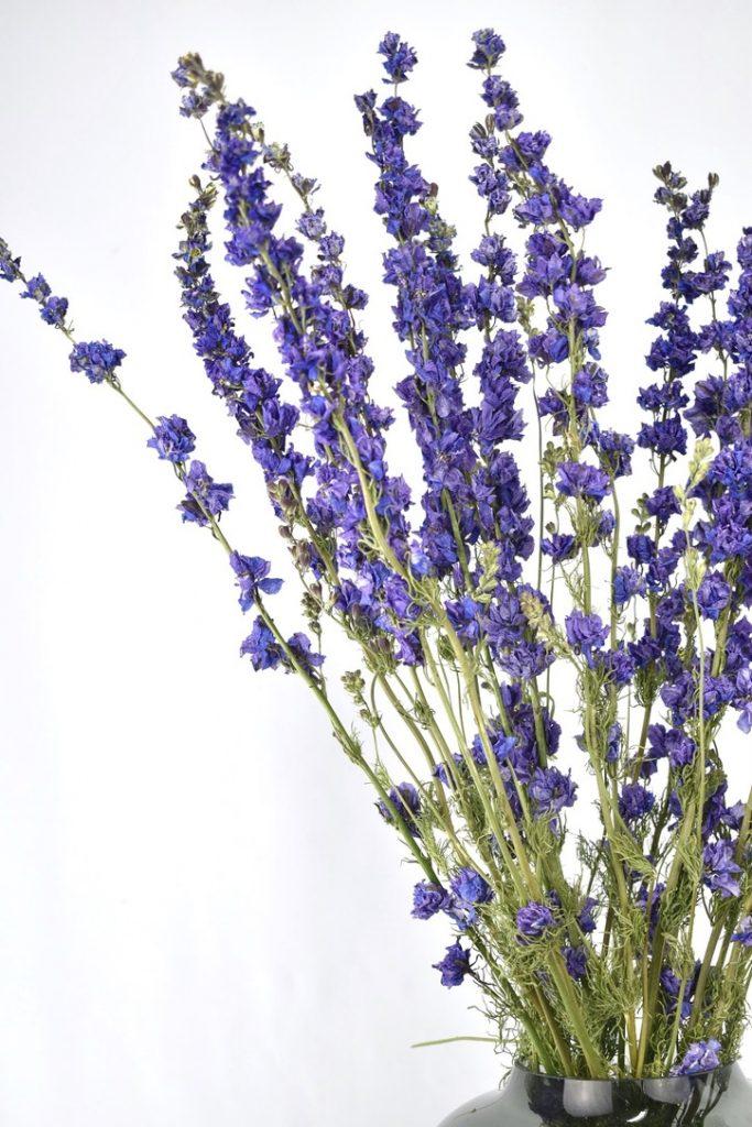 gedroogde losse bloemen